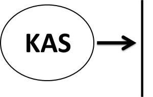 kas yasaları