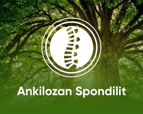 ankilozan-spondilit-drceyhunnuri-min