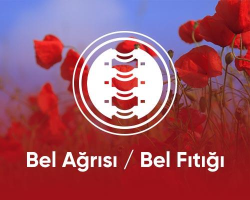 bel-agrisi-bel-fitigi-drceyhunnuri-min