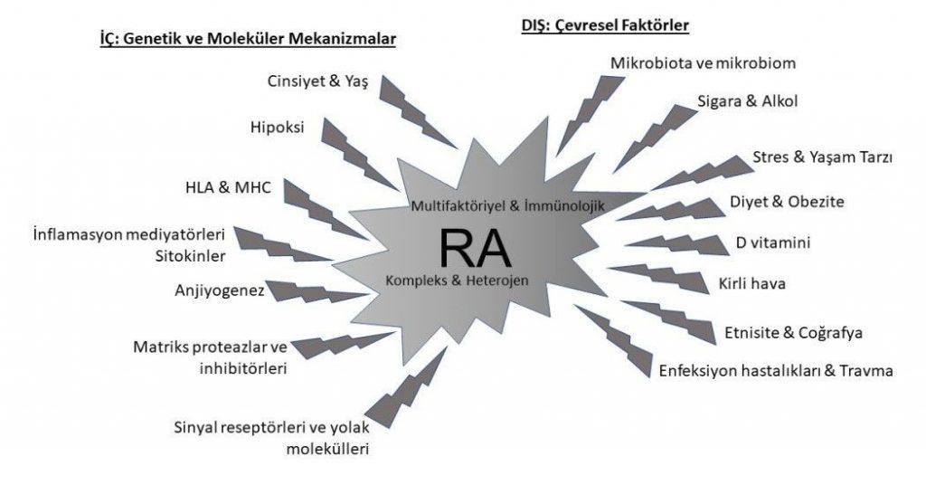 Romatoid Artrit Çevresel Faktörler