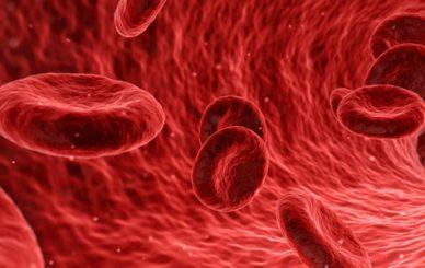 Blood-Tests-and-Rheumatism-kan-testi-ve-romatizma-dr-ceyhun-nuri