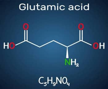 Çin Tuzu - Glutamic acid